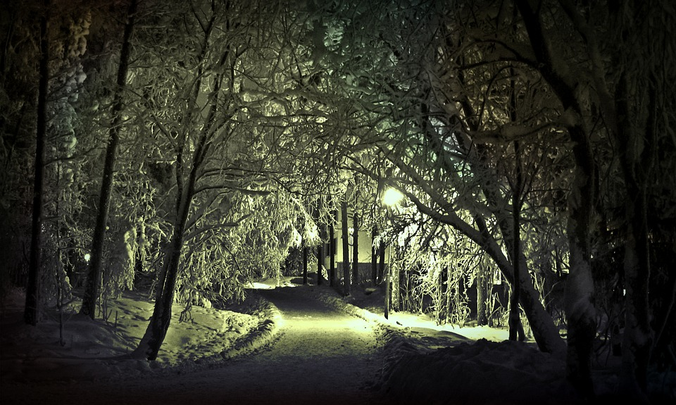 winter scene from Pixabay.jpg no attrib. req.