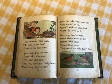 pages inside oldest Dick and Jane